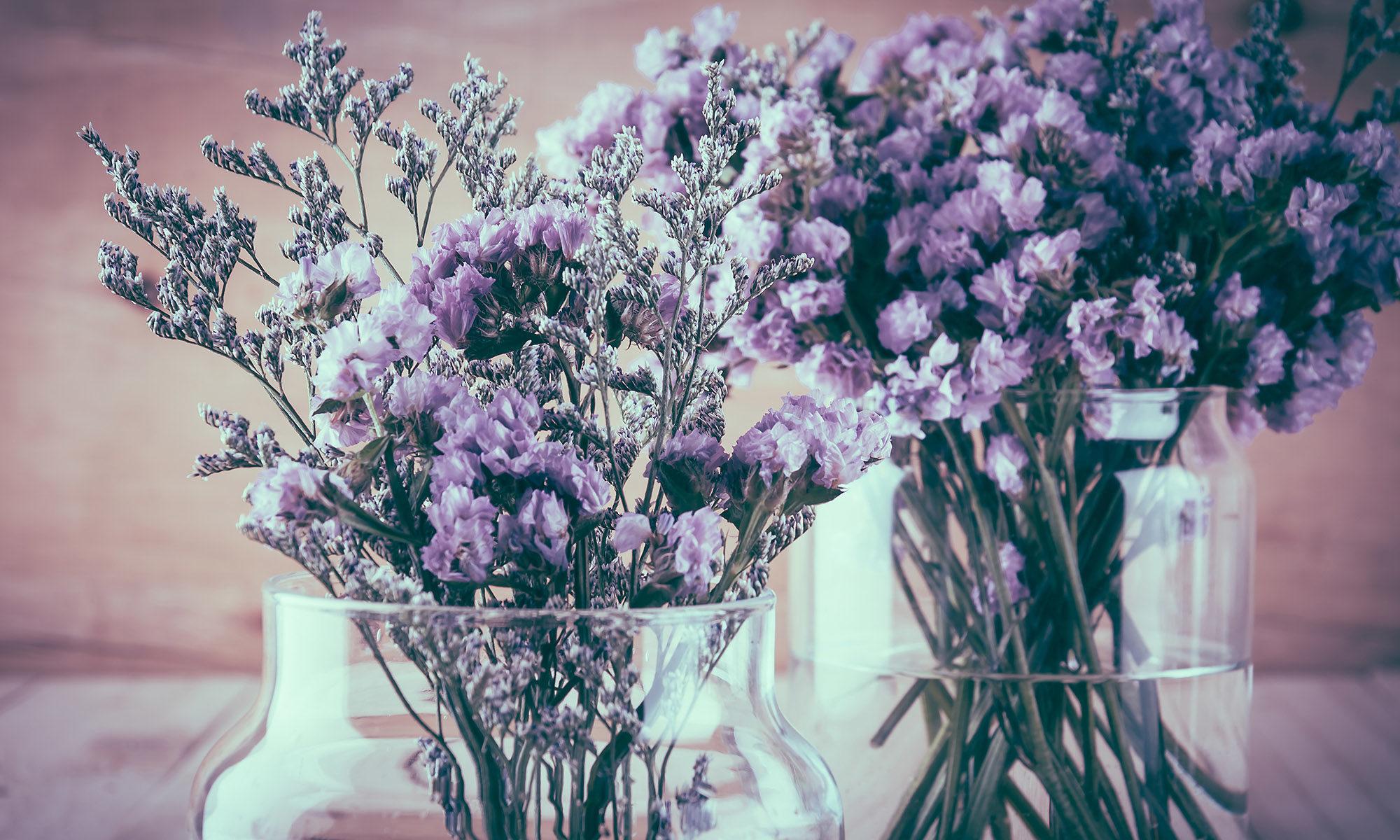Sušené květy